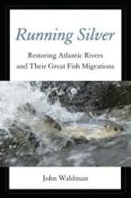 running silver